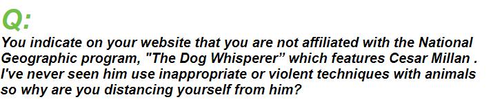 Question to Mr Paul Owen On dog training